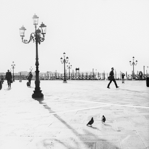 Piazzetta San Marco, Venice 2011 - black and white photography