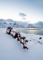 Norway Lofoten Landscape Photography - Photo 4065