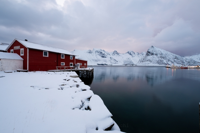 Norway Lofoten - 写真 4067
