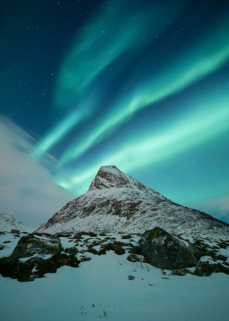 Norway Northern Lights - Norway Lofoten