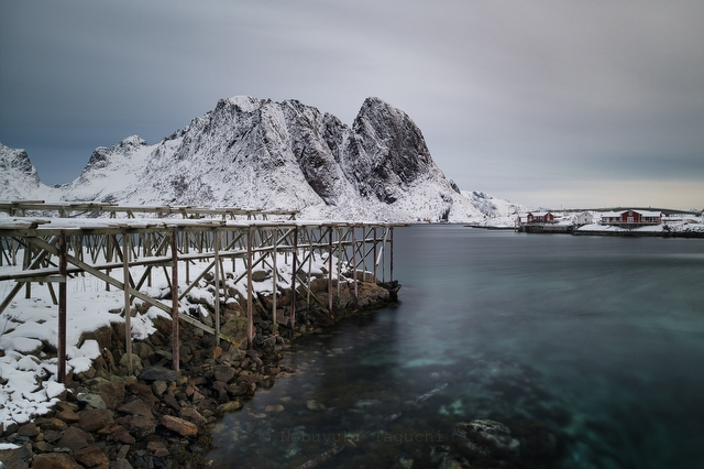 Norway Lofoten - 写真 4134