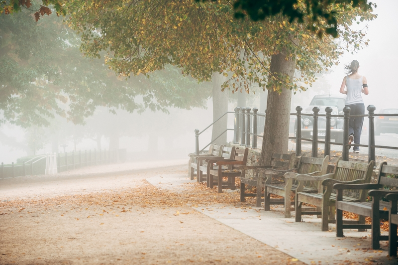 Foggy Days - Photo 4172
